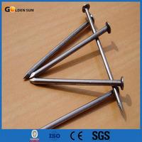Common Nail/Common Nail Iron Nail Factory/Common Nail Size