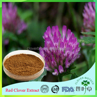Favorable price best quality Trifolium Pratente L in bulk supply, free sample for initial trial