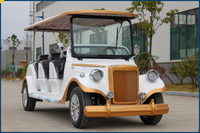 White Color Tourist electric cars 8 seats AC Tour Car featuring succinct and sprightly style