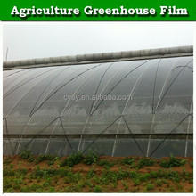 Brand new greenhouse covering material clear pe plastic film for sale