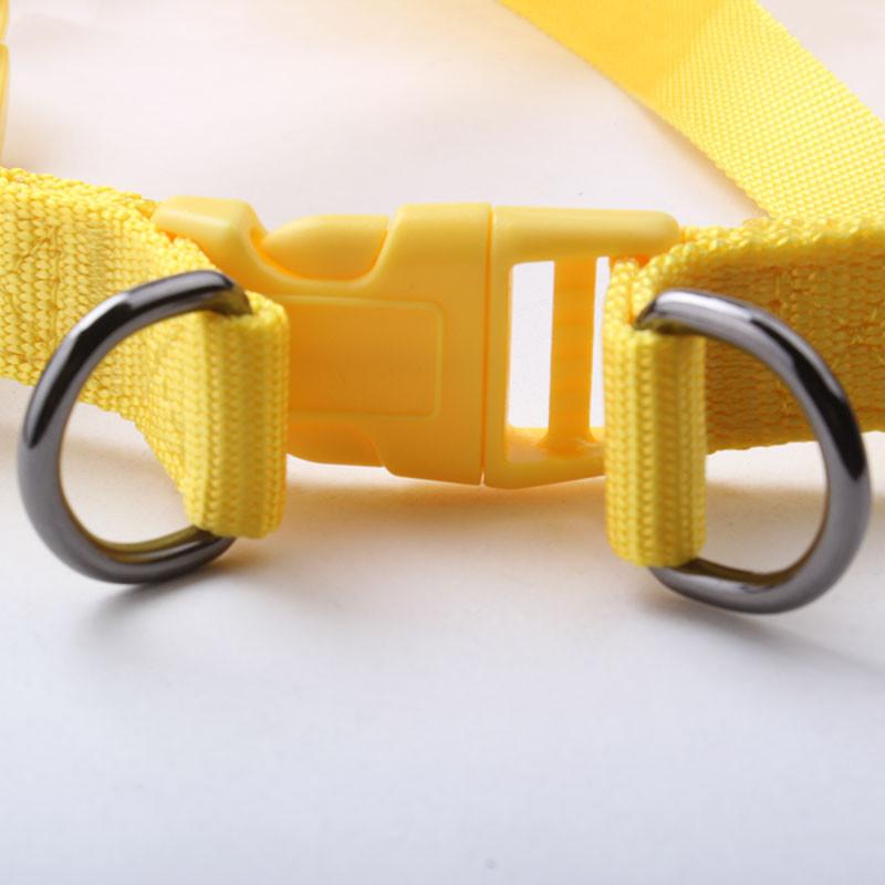 hot sale nice design hunting dog collar with high quality nylon