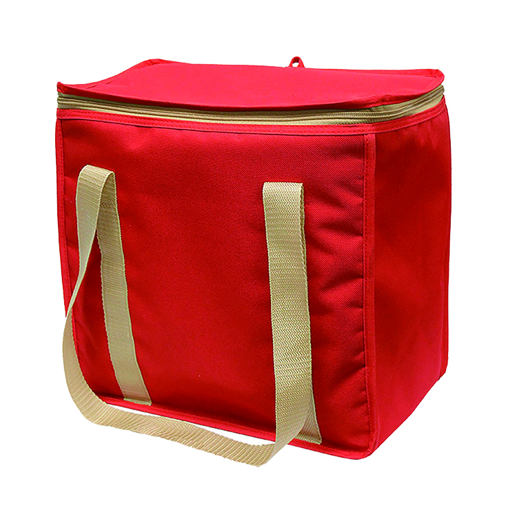 Bottle Grocery Food Delivery Bag Collapsible Lunch Carry Cooler Bag