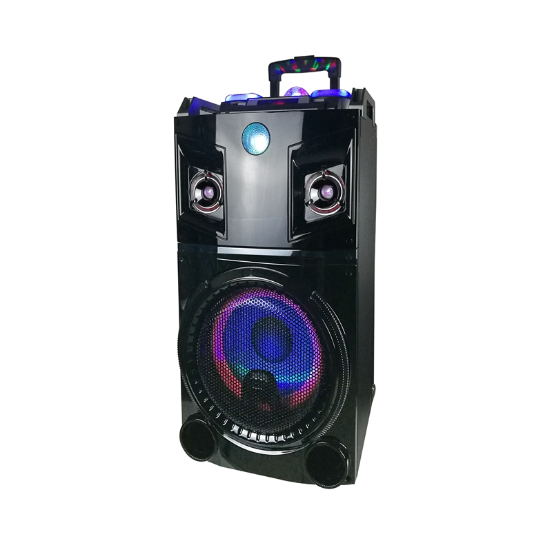 Single 10 inch full range trolley bluetooth speaker High quality professional trolley speaker with USB/SD/MMC/BT/FM/digital