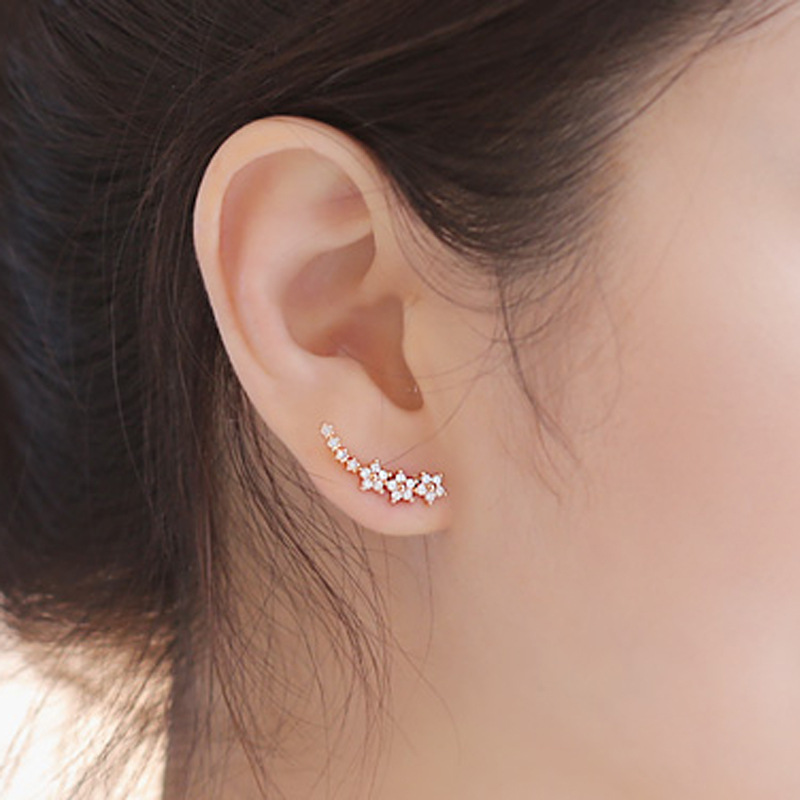 Fashion simple design 925 silver earring 18K rose gold CZ zircon women earring