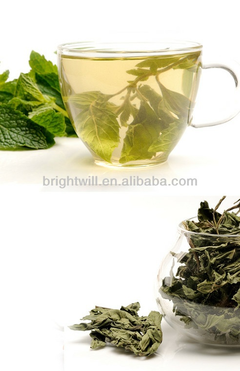 Wild mint dried mint tea spent good mint leaves