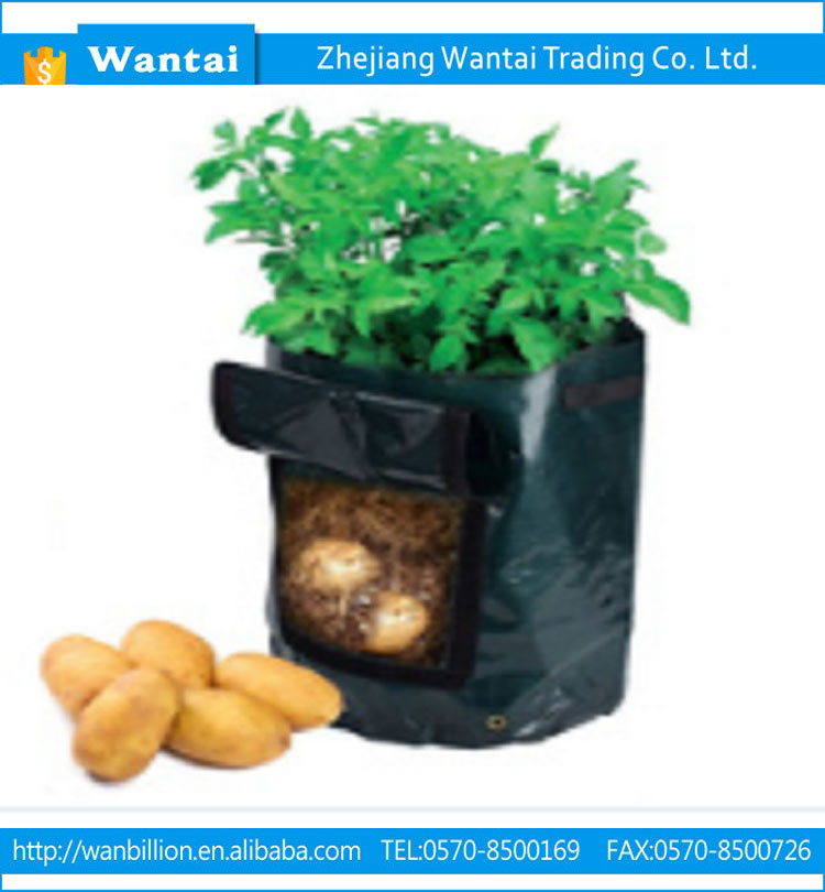 PE material good quality waterproof wholesale factory price potato bag