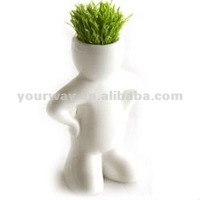 Little white man,Grass doll.Grass head