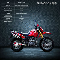 Famous china dirt bike for sale cheap ZF250GY-2A