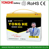 48 volt deep cycle 40ah lead acid agm battery pack for auto rickshaw