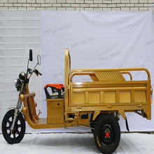 cheap 1000W 48V 3 wheel cargo electric tricycle