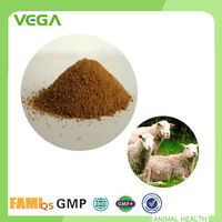 Probiotic capsules Powder Poultry Feed Ingredients