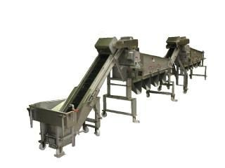 Shrimp Processing Line