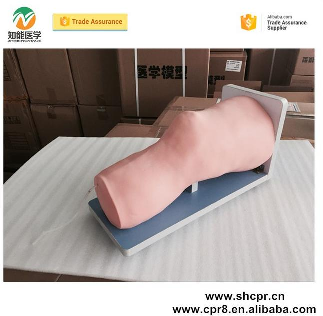 Medical science knee joint cavity injection training model, training simulator