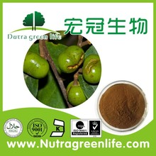 ISO/Kosher Certified Pygeum Africanum Extract Powder/Pygeum Bark Extract