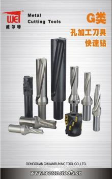 4x Diameter Indexable U Drill(C25-SD21/4D-84L)