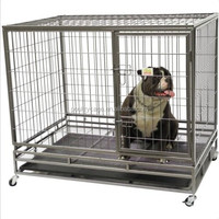 Anping Factory Price Fancy Pet Tub Dog Kennel And Unique Dog Kennel For Sale ( Now or Never )