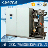 80 300g Ozone Generator Water Treatment