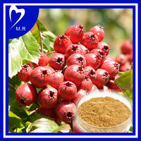 Factory supply directly hawthorn berry p.e