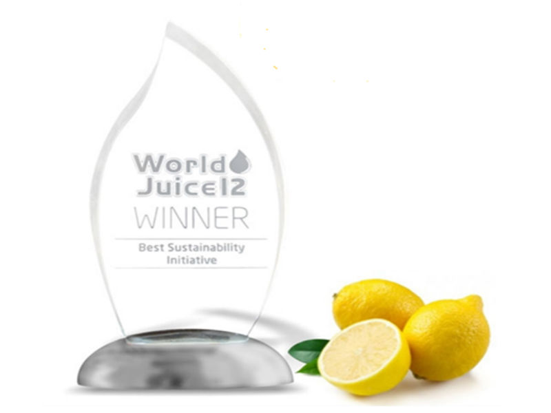 Frozen Lemon Juice Concentrate Clear & Cloudy // 400 and 500 GPL