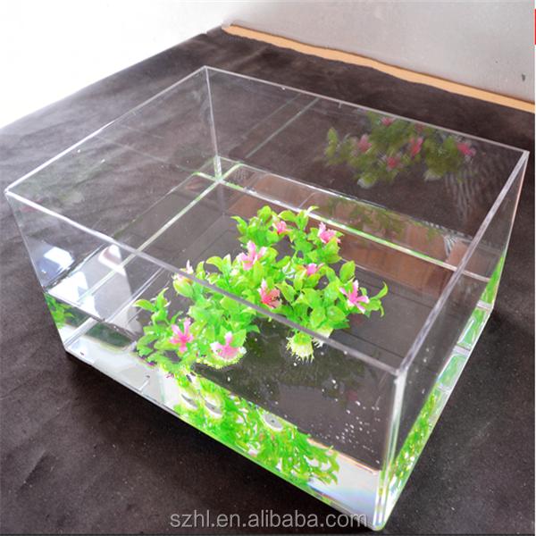 fish tank buy