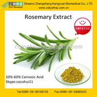 GMP manufacturer supply 100% natural Antioxidant Rosemary Extract Powder