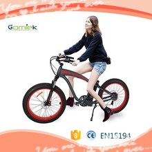 G266 two wheel self balancing mobility electric bike covered electric bicycle