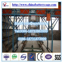 automatic chicken quail cage for sale poultry layer farm