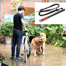 Hands Free Dog Attached to Bicycle Bungee Lead Exerciser Dog Bike Training Leash