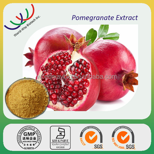 free sample ellagic acid,HACCP KOSHER FDA pomegranate extract,40% 70% 90% ellagic acid