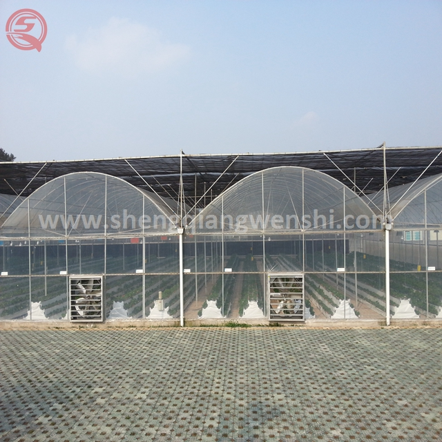 Best price poultry farm foldable double layer plastic greenhouse for sale