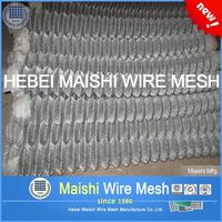 50mm opening 2.5mm wire galvanized chain Link fence mesh