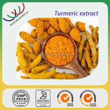 Natural free sample curcumin extract,arthritis prevention 95% curcuminoids,factory supply turmeric root extract/curcumin