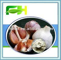 Ground Dehydrated Garlic Powder Supplier