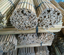 Bamboo pole For Tree Guards,Dia.22-24mm,305cm