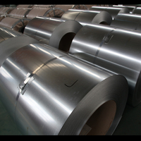 China supplier SGC440 SGC490 cold or hot rolled substrate galvanizing steel coil for structure