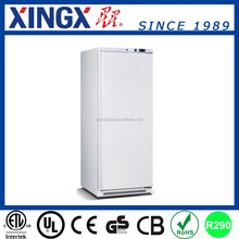 Hotel Kitchen Equipment, Commercial Upright Chiller_BC-500W