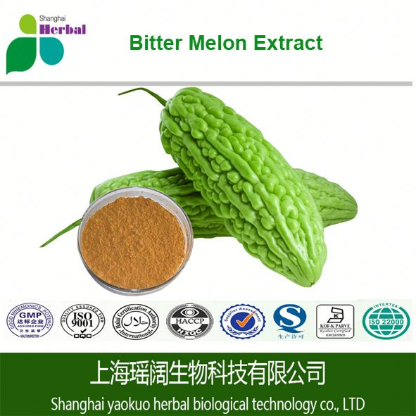 China Manufacturer Medical Grade Powder and Liquid Dosage Leaf Bitter Melon Extract