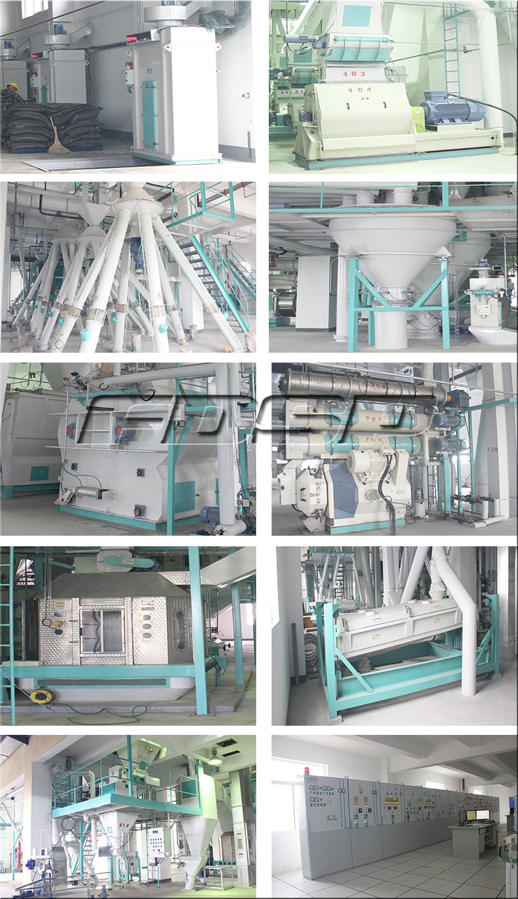Stable Performance small feed mill plant/equipment