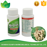 Hot selling quick effective mango fertilizer