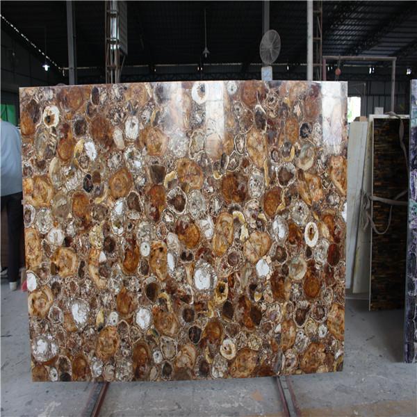 Fossil Wood Stone Countertop Wood Jade Slb Petrified Wood