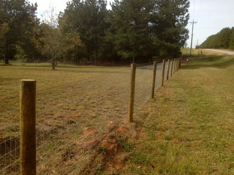 hinge joint sheep/cattle deer farm fence