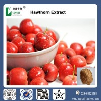 Chinese Herbal Extract-Dried Hawthorn Berry Powder Extract with Flavones 5%