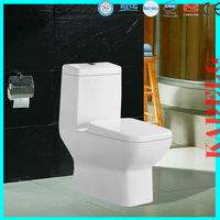 Siphonic Bathroom One Piece Toilet WC Toilet 2685A