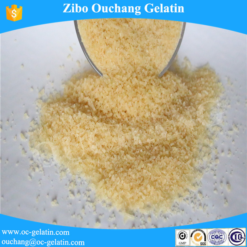 Health Drug icing halal gelatin powder 240 bloom medicine Gelatin