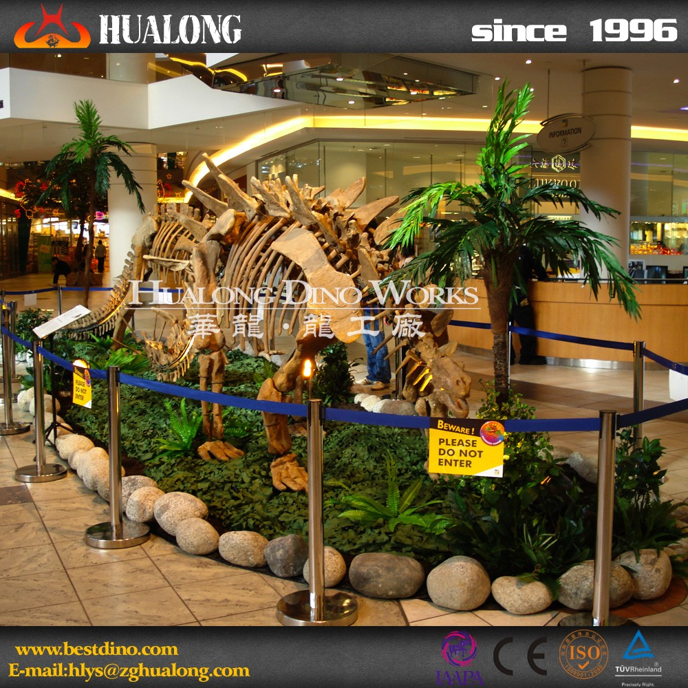 Customized Vivid Dinosaur Skeleton Museum Quality Replica