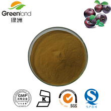 100% Natural Dark Plum Extract/Graviola Extract/Dark Plum Fruit Powder