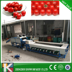 Easy to operate plum fruits cherry tomato sorting machine
