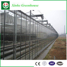 Professional Hydroponics Tomatoes Glass Greenhouse,used commercial greenhouses,agriculture products