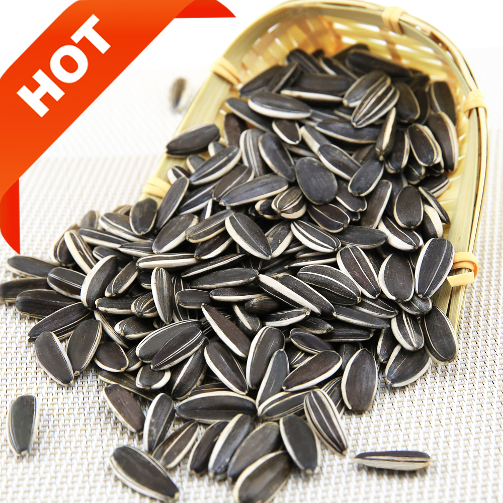 wholesale cheap 5009 sunflower seeds for human consumption