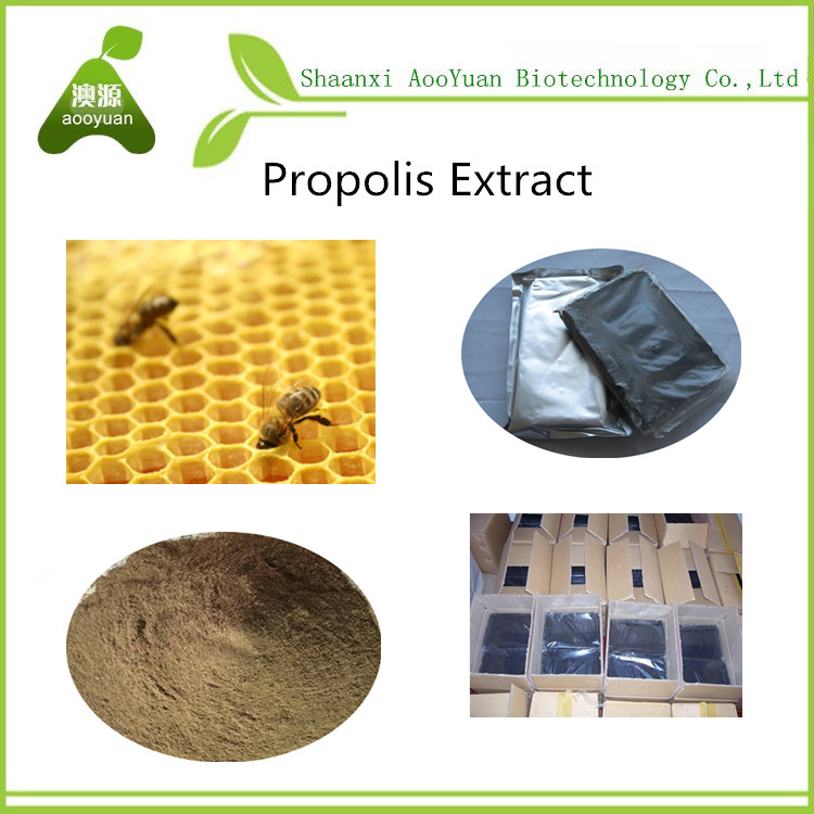 water-soluble green propolis extract powder bulk